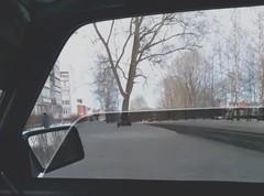 Видеоотзыв о нашем магазине от Артёма Зернова